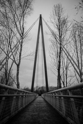 Architecture Bare Tree Branch Bridge Bridge - Man Made Structure Built Structure Connection Day Footbridge No People Outdoors Sky Suspension Bridge The Way Forward Tree EyeEm Selects