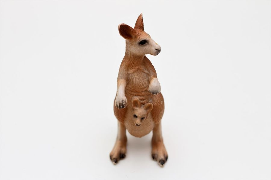 Schleichtiere kangaroo Childrens Toys Hartgummi Spielzeug Schleich Schleich Animals Schleich Tiere Schleichtiere Schleichtiere Beuteltier Schleichtiere Kangaroo Schleichtiere Känguru Schleichtiere Spielzeug Schleichtiere Toys Spielzeug Spielzeug Tiere Spielzeugfiguren Spielzeugfotografie Spielzeugtiere Toyphotography Toys