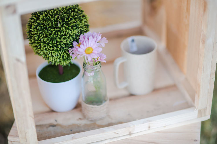 Beauty In Nature Close-up Container Day Flower Flower Head Flowering Plant Fragility Freshness Green Color Growth Indoors  Nature No People Pitcher - Jug Plant Still Life Table Tray Vase Vulnerability  Wood - Material