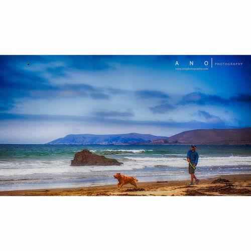 Beach Dog ANOPhotography Man, Dog, Beach, Ball... Dog Heaven