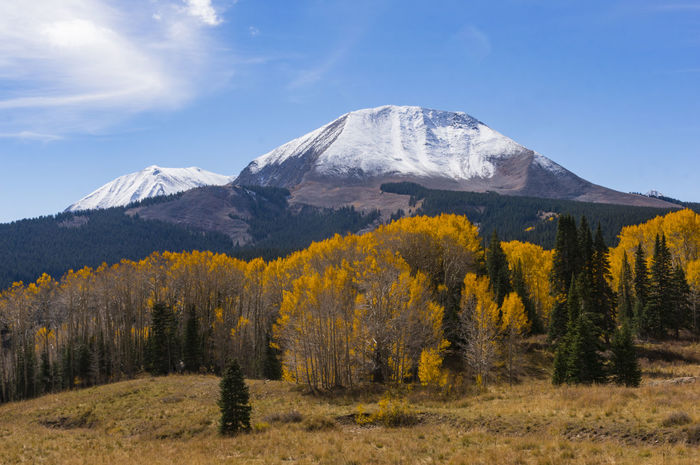 Fall colors and first snows on the La Sals mountains, near Moab, UT, October 2015 Day Fall Fall Beauty Fall Colors Landscape Majestic Moab  Mountain Mountain Range Nature No People Non Urban Scene Non-urban Scene Outdoors Remote Scenics Season  Sky Snow Snowcapped Mountain Tranquil Scene Tranquility Travel Destinations Tree Utah The Great Outdoors - 2017 EyeEm Awards