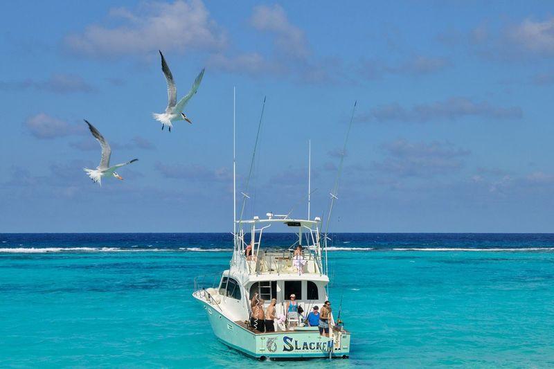Sea Water Beauty In Nature Scenics Outdoors Cloud - Sky Blue Beach Caribbean Sea Cayman Islands Caymanislands Caymanisland Caribbean Cruise Caribbean_beautiful_landscapes Caribbeanbeauty Caribbean Fishing