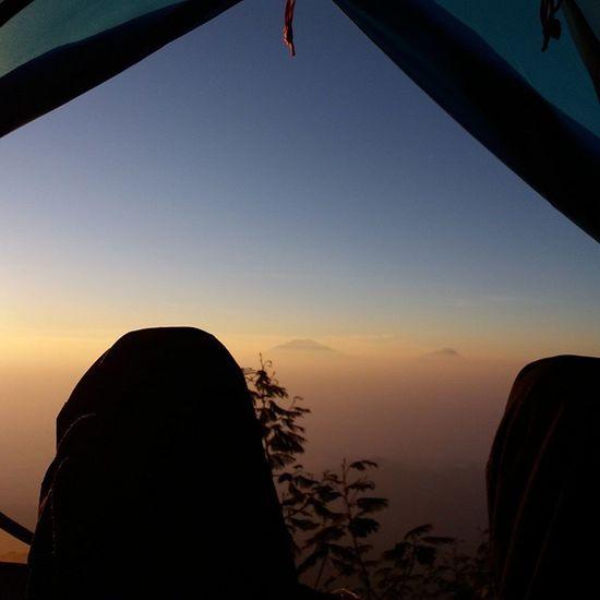 Pagi-pagi buka tenda pas banget viewnya kaya begini. Indahnya view sumbing jalur kaliangkrik Indonesiaituindah Exploreindonesia Mtsumbing