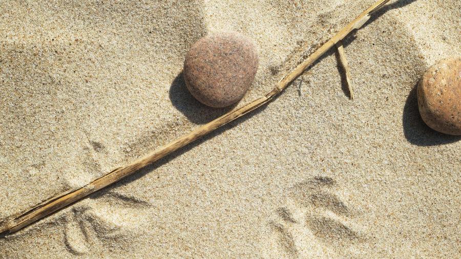 Sun and Sand -