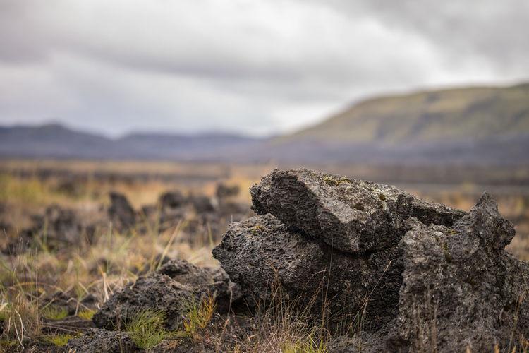 lava rocks in a