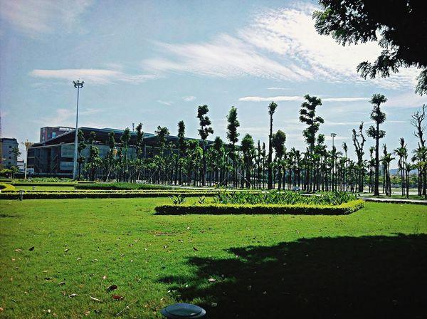 Cũng một ngày nắng nóng tôi dừng xe lại vườn hoa Quảng Trường Vĩnh Yên ...qua đó thấy được quang cảnh nơi đây thật yên bình ....