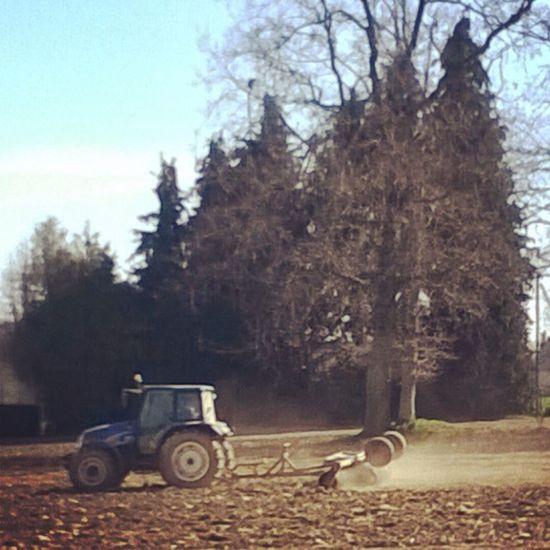 Tractor in a Field / Tracteur dans un Champ Spring Printemps Primavera Frühling Taupont Bretagne Breizh Morbihan Miamorbihan Agriculture