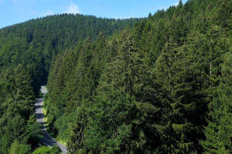Harz Mountains,