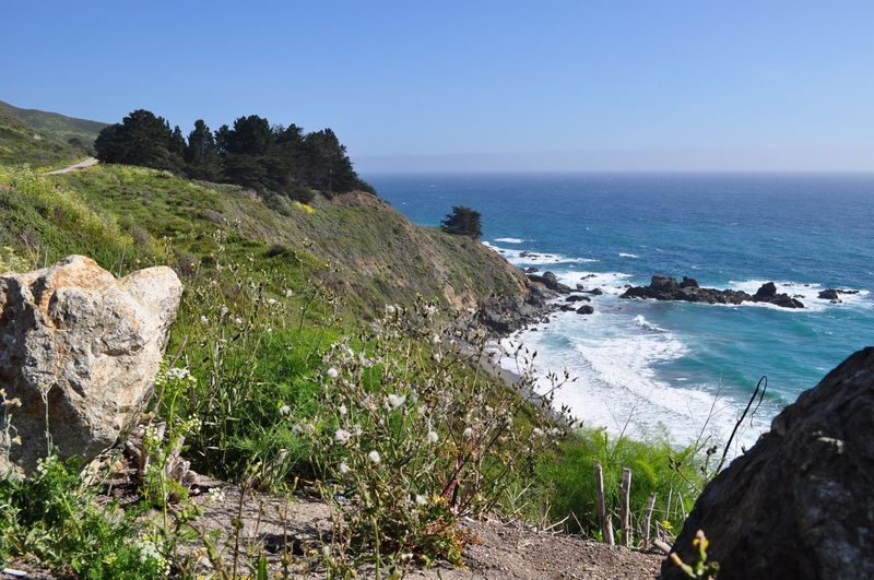 Pacific Coast Highway 🎉💫✨ Sea Water Scenics - Nature Beauty In Nature Beach Land Sky Clear Sky Tranquility Tranquil Scene Outdoors No People Horizon Over Water Horizon Rock Plant Nature Tree Day Rock - Object Beauty In Nature Environment Clear Sky Rock Cliff Coastline Tranquility Nature Plant Land