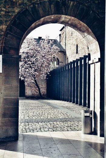 EyeEm Best Shots Architecture Built Structure Arch No People Old Building  Outdoor Nature Porta Nigra Römisch Bogen