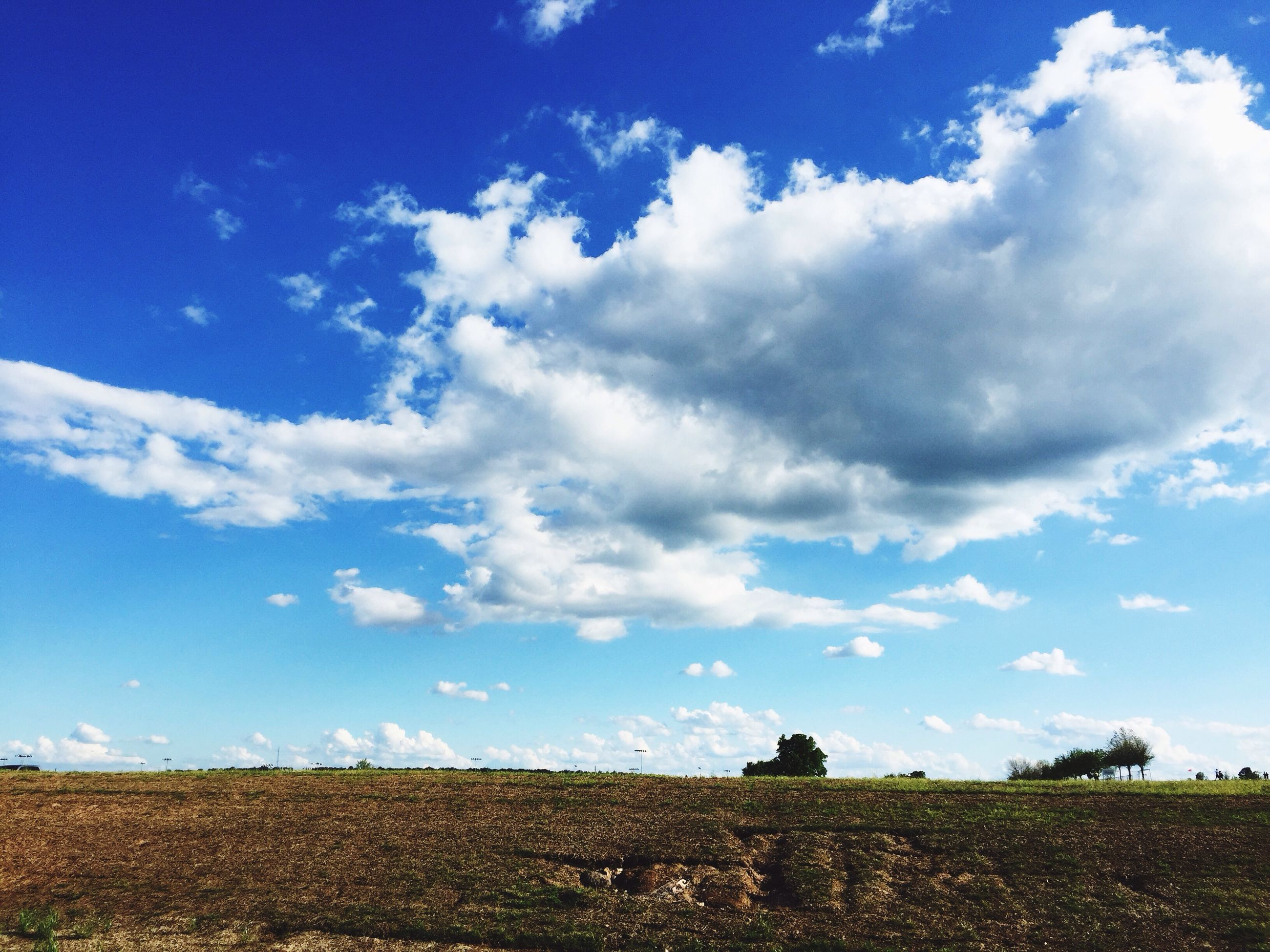 sky, field, landscape, tranquil scene, tranquility, blue, cloud - sky, rural scene, agriculture, beauty in nature, scenics, nature, cloud, growth, horizon over land, grass, farm, plant, day, sunlight