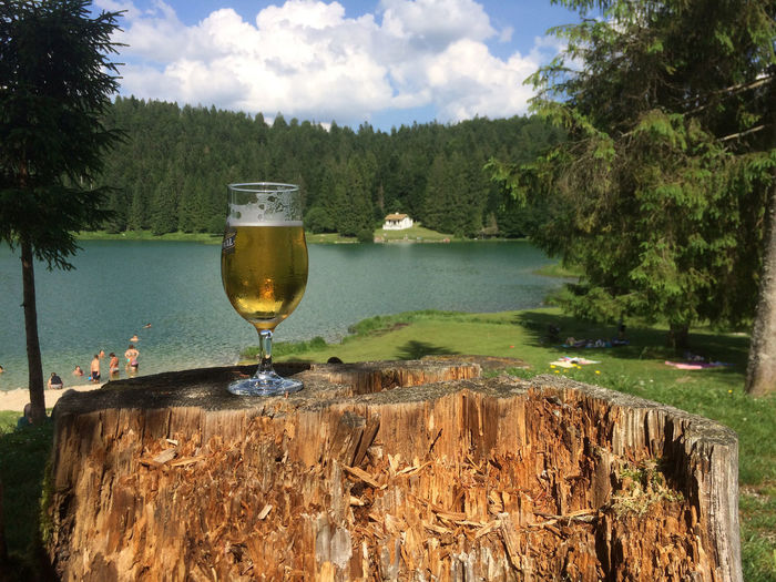 Beer Time Alcohol Beer Time Drink Drinking Glass Lake View Outdoors Refreshment Scenics Sky Tree Water
