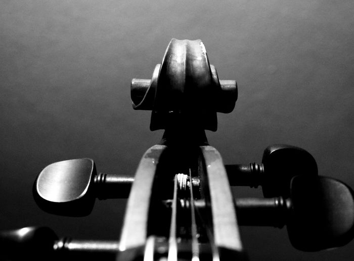 Cello Close-up Focus On Foreground Instruments Music Musician No People Pegs Scroll TheWeekOnEyeEM Eyeemphoto Monochrome Photography