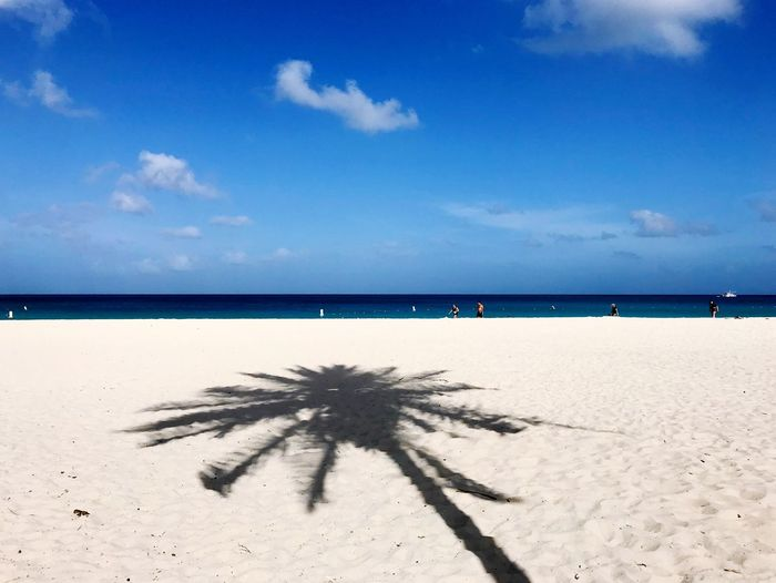 Travel Caribbean Beach Sand Sea Nature Tranquil Scene Beauty In Nature Scenics Sky Tranquility Horizon Over Water Shadow Outdoors Sunlight Day Blue Cloud - Sky No People Water Palm Tree