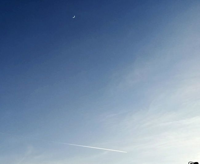 Blusky Moon Airplane Taking Photos Low Angle View Clear Sky Nature Flying Outdoors No People Tranquility Backgrounds Half Moon