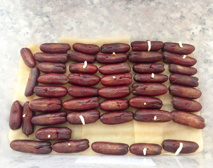 A seed dates. Brown Candy Chocolate Close-up Dark Chocolate Dates Day Dessert Directly Above Food Food And Drink Freshness High Angle View Homemade Indoors  Indulgence Kurma Large Group Of Objects No People Nut - Food Ready-to-eat Still Life Sweet Food Temptation Unhealthy Eating