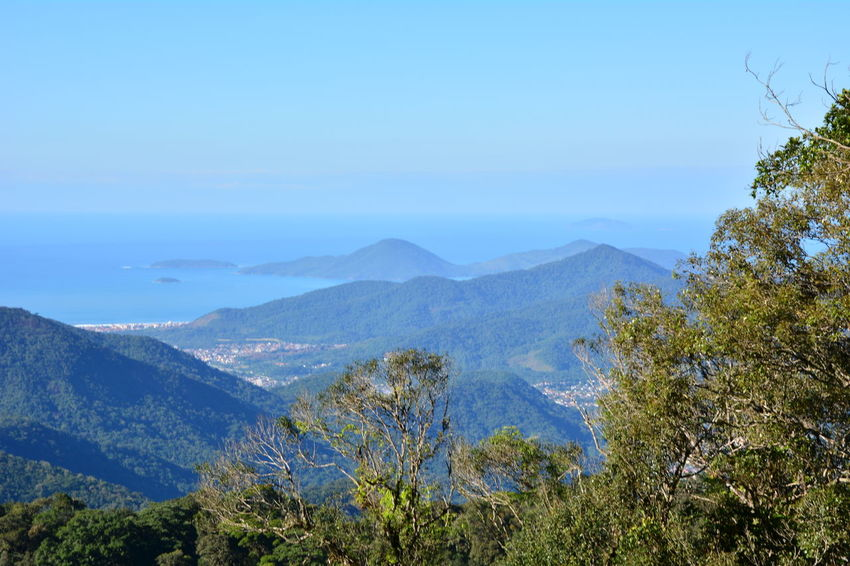 View of Ubatuba from the Serra do Mar Ubatuba - Litoral Norte - SP Serra Do Mar Mata Atlântica Aerial View Sunny Day Ubatuba Sun Vacation Trip Voyage Tourism Tree Nature Preservation Calm