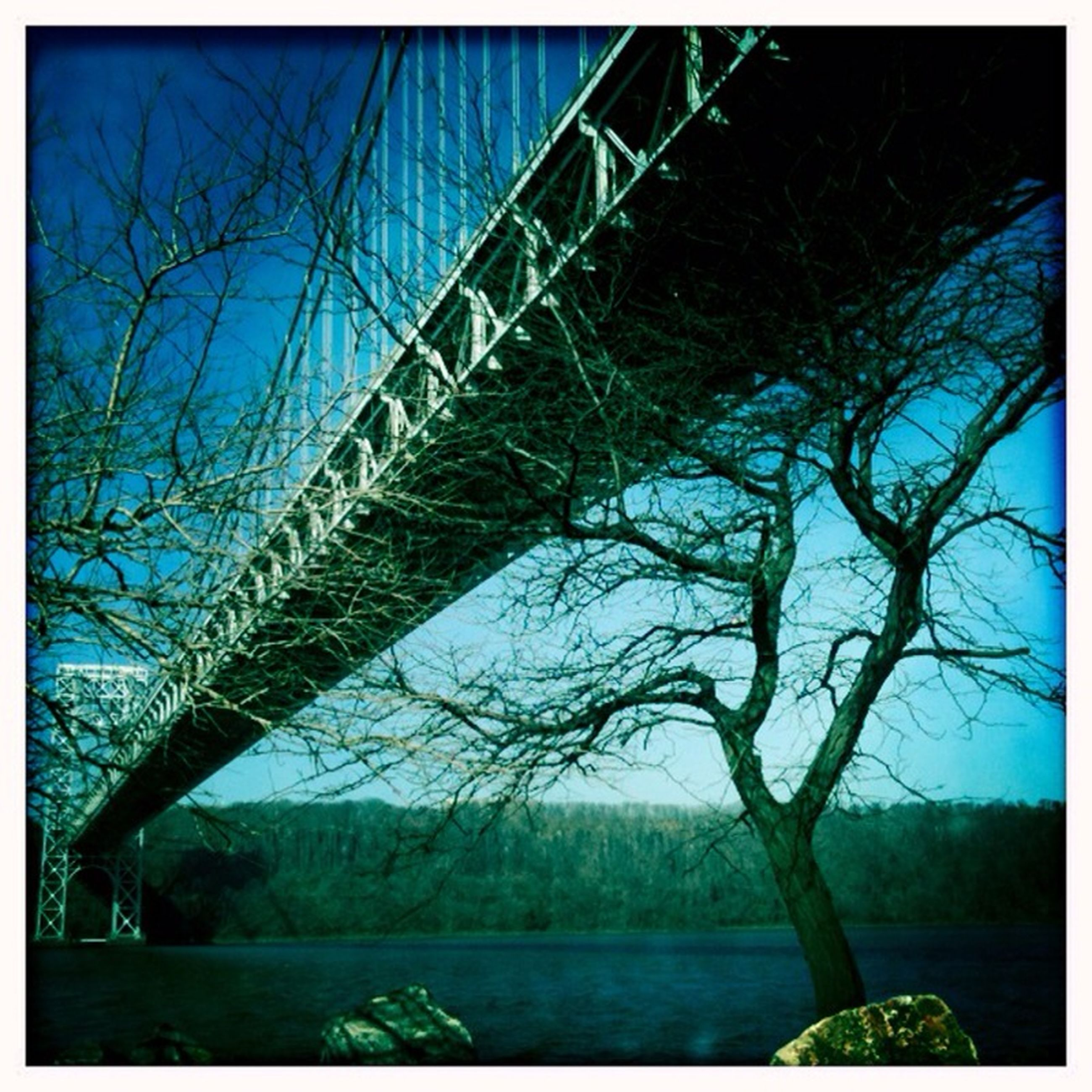 water, transfer print, connection, tree, bridge - man made structure, river, auto post production filter, bridge, bare tree, tranquility, nature, tranquil scene, built structure, sky, scenics, railing, lake, clear sky, beauty in nature, branch