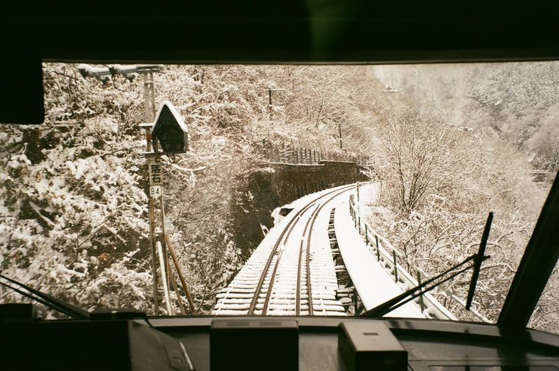 Railroad tracks by trees during winter