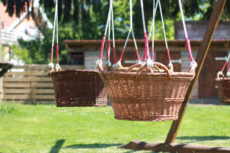 Tree Picnic Basket Basket Grass Close-up Whicker Bamboo Grove Woven Bamboo - Plant Rope Swing Hammock Swing Giant Panda Outdoor Play Equipment Hanging Weaving Loom Textile Factory Slide Hanging Light