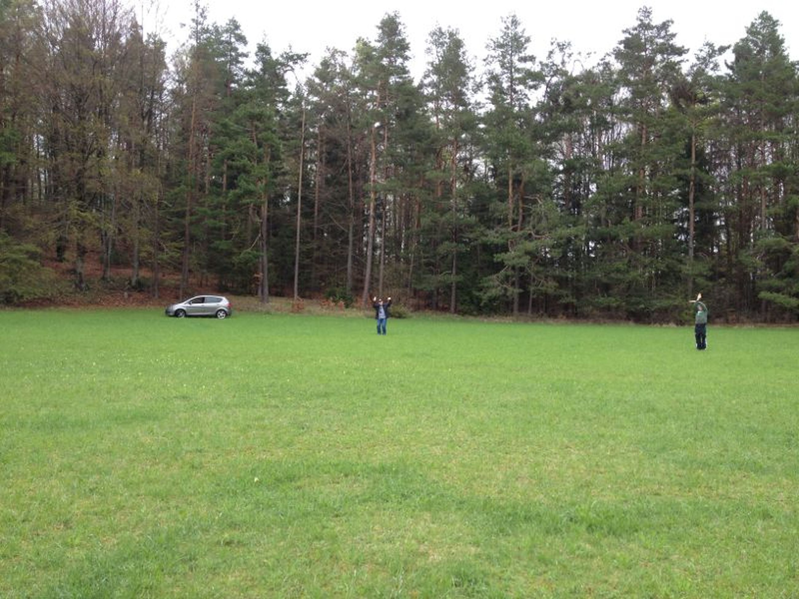tree, grass, green color, leisure activity, growth, lifestyles, men, nature, tranquility, park - man made space, grassy, field, tranquil scene, transportation, beauty in nature, day, landscape, person
