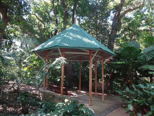 51 days driving around Australia - Day 41 - 44 Townsville Architecture Beauty In Nature Growth Park - Man Made Space Travel Australia