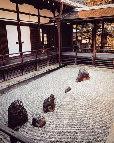 東海庵 妙心寺 Kyototravel Kyoto,japan Tranquil Scene Travel Destinations Japanese Garden Japan Photography Animal Themes Indoors  No People Day Architecture Built Structure Food