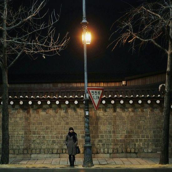Makeportraits Makemoreportraits Seoul_korea 아침에 밤 사진 •_• RobReb