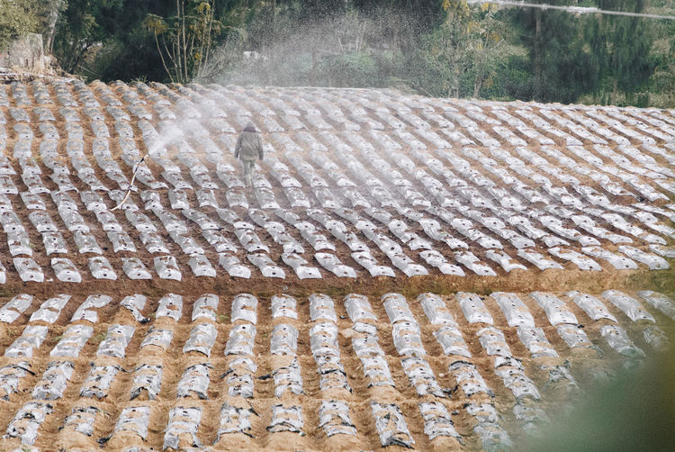Pattern No People Day In A Row Nature Repetition High Angle View Outdoors Architecture Arrangement Sunlight Roof Plant Side By Side Order Close-up Roof Tile Land Seat Built Structure Farm Farming Countryside Water