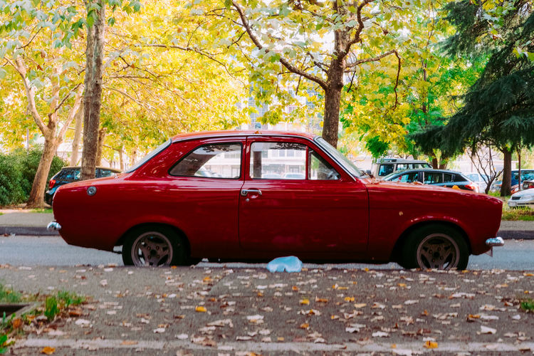 Red car against trees