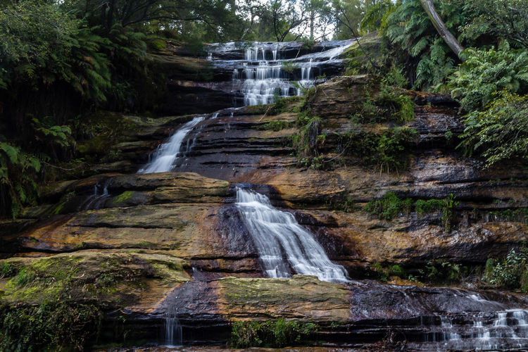 The Katoomba Falls is a segmented waterfall that is located close to Echo Point near Katoomba on the Kedumba River descending into the Jamison Valley located within the Blue Mountains National Park in the Blue Mountains region of New South Wales, Australia. https://en.wikipedia.org/wiki/Katoomba_Falls Katoomba Falls Katoomba, NSW, Australia, Cliff Falls Forest Low Angle View No People Power In Nature Rock - Object Scenics Water Waterfall