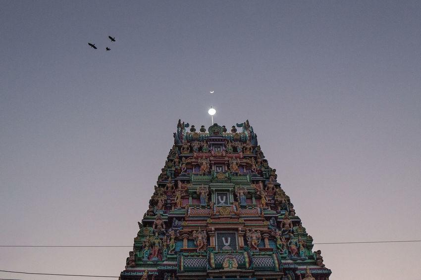 Moon over Sri Kaali Amman Temple in Downtown Yangon. Architecture Birds Burma Crescent Moon Hindu Temple Hinduism Horizontal Kaali Moon Myanmar Night No People Outdoors Sky Sunset Temple Travel Destinations Yangon