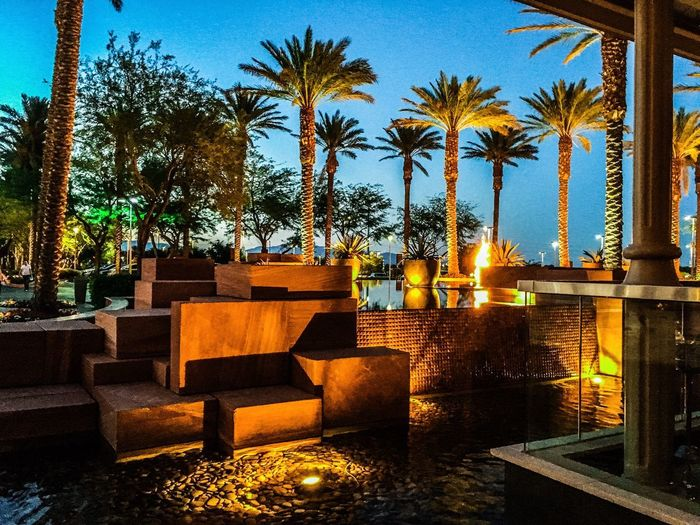 """""""Summerlin"""". Summerlin, Las Vegas, Nevada EyEmNewHere View Scenery Fire Lights Palm Tree Red Rock Summerlin Las Vegas Palm Tree Plant Tree Nature Sky Architecture Water Outdoors Sunset"""