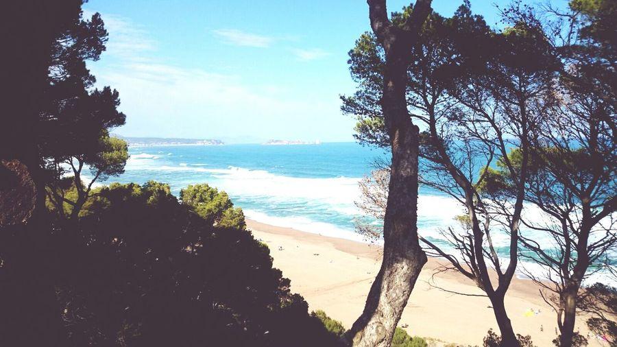 Love playa