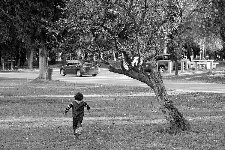 Child playing in park