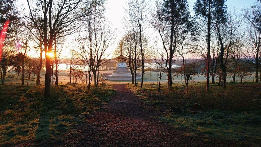 Sunrise Willen Lake Peace Pagoda Milton Keynes Miltonkeynes MK Buckinghamshire