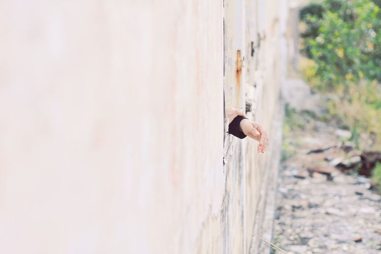 Side view of young man on wall