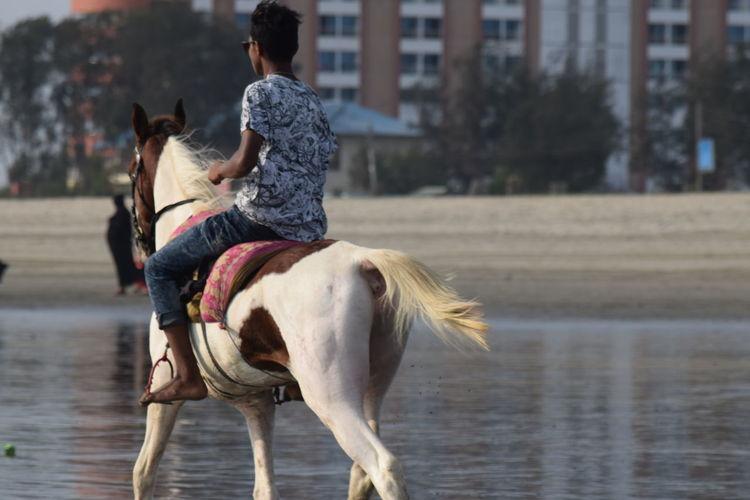 Man Riding Horse At Beach