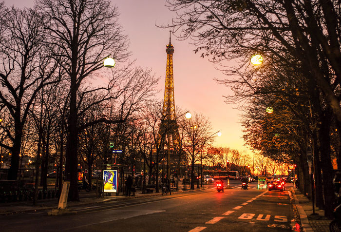 City Of Love Late Afternoon Nightphotography Orange Paint The Town Yellow Paris Paris, France  ParisByNight The Week On EyeEm Avenue Montaigne  Bare Tree Beautiful Light City Lights Daylight Exposed Dusk Dusk In The City Illuminated No People Sundown Tourist Destination Travel Destination Travel Destinations Yellow