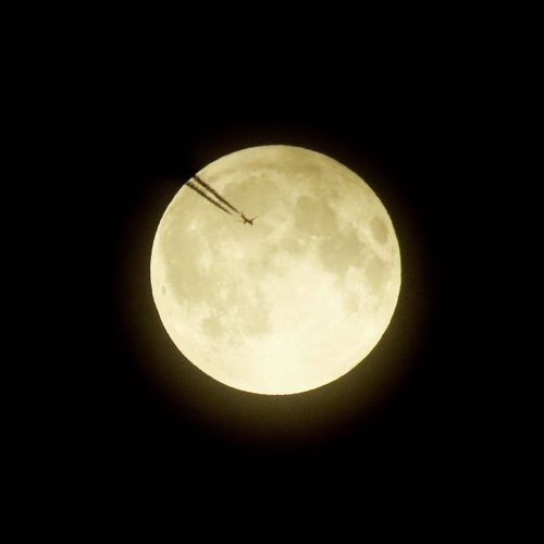 Adapted To The City Moon Fly First Eyeem Photo Fullmoon Full Moon Fly To The Moon