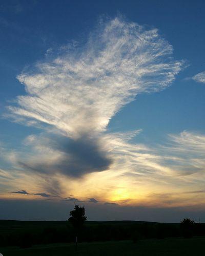 Sunset Sunset #sun #clouds #skylovers #sky #nature #beautifulinnature #naturalbeauty Photography Landscape [a:1286387] Sunset And Clouds  Fun Cloud Clouds And Sky Clousandsky Cloudshot Sunsetporn Sunsetlover Relaxing Enjoying Life Nofilter Nofilterneeded