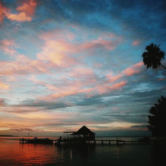 Sunset Cloud - Sky Rajaampat Sea Palm Tree Beach INDONESIA Vacations Holiday Day