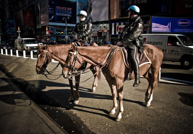 Cops Riding Horses In City