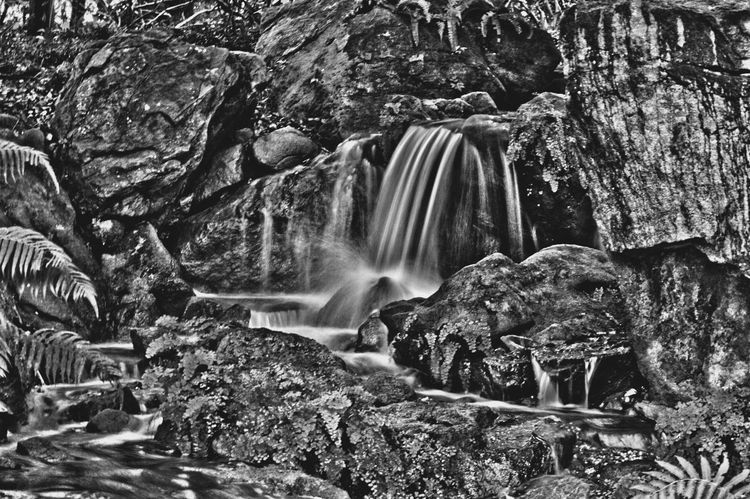 Nature Waterfall Rock - Object Forest Motion Rock Beauty In Nature Scenics Tree Travel Destinations No People Nikonphotography Amateurphotography Nikon D3200 Outdoors Water Day