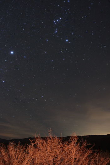 Astronomy Beauty In Nature Camping' Constellation Dark Desert Galaxy Idyllic Infinity Landscape Majestic Nature Night No People Orion Outdoors Scenics Sky Space Star Star - Space Star Field Stars Tranquil Scene Tranquility