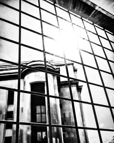 Trocadero Monument Paris Sunshine Railing Fence Bnw_captures Bnw_collection Bnw EyeEm Best Shots - Black + White Blackandwhite Photography Blackandwhite Mmaff From My Point Of View Eye4photography  EyeEm Gallery Taking Photos Hello World