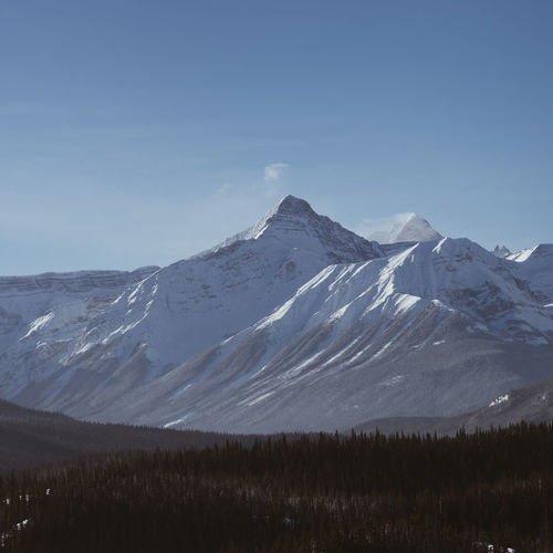 Canada Mountain Range Mountain Forest Snow Snowcapped Mountain Pine Tree Stone Aerial View Aerial Blue Sky DJI X Eyeem