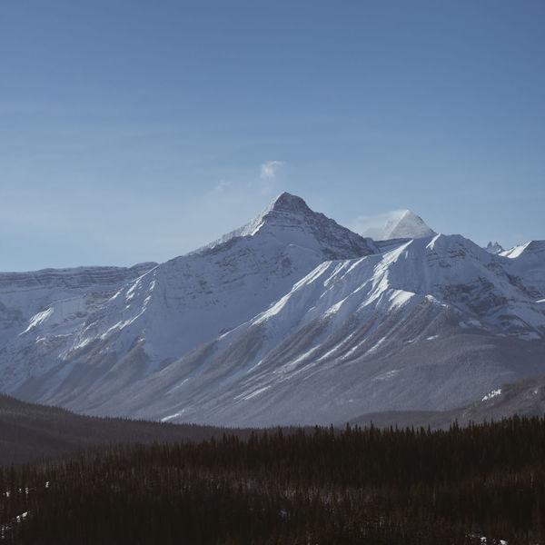 Canada Mountain Range Mountain Forest Snow Snowcapped Mountain Pine Tree Stone Aerial View Aerial Blue Sky DJI X Eyeem