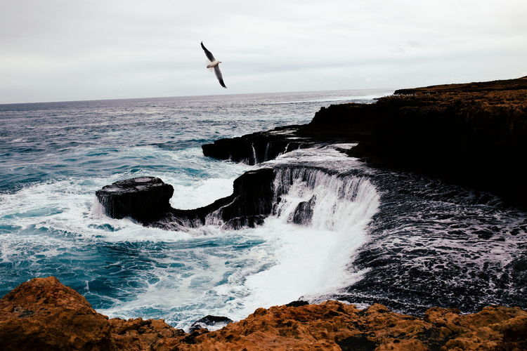 Take flight. Waves Outdoors Ocean Travel Adventure Landscape Surf Beautiful Nature Beach Sea