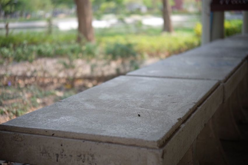 Seat in the park Sitting Outdoor Concrete Cement Grey Park Garden Tree Leaves Focus On Foreground Wood - Material Day No People Close-up Outdoors Nature Day Light Sun